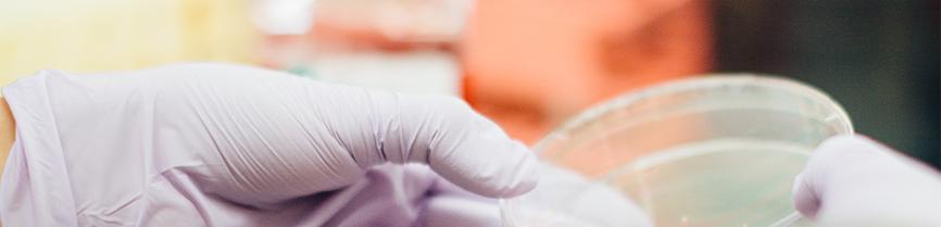 probiotic laboratory